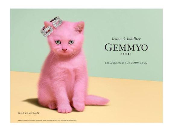 Campagne-affichage-Gemmyo